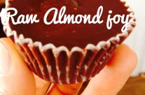 Raw Almond Joy Cups